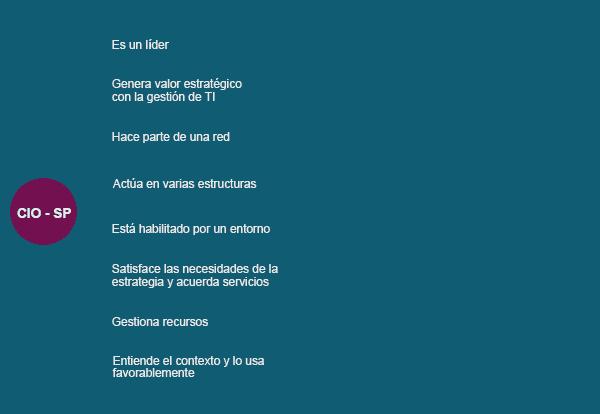 Funciones de CIO evZek